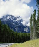misty σκηνή βουνών καταρρακτών Αλμπέρτα banff Καναδάς Στοκ Εικόνα