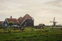 misty χωριό πρωινού Στοκ εικόνες με δικαίωμα ελεύθερης χρήσης