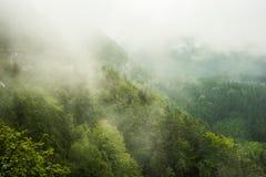 Misty Στοκ φωτογραφία με δικαίωμα ελεύθερης χρήσης