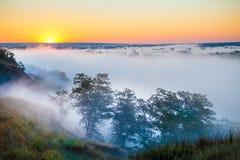 Αυγή της Misty πέρα από την κοιλάδα και το δάσος Στοκ εικόνες με δικαίωμα ελεύθερης χρήσης