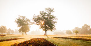 misty πρωί Στοκ εικόνα με δικαίωμα ελεύθερης χρήσης