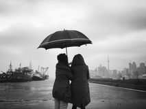 misty Στοκ εικόνες με δικαίωμα ελεύθερης χρήσης