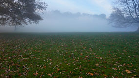 Misty Autumn dag i Hampstead Royaltyfri Foto