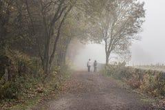 Misty Autumn Day i Derbyshire Royaltyfria Bilder