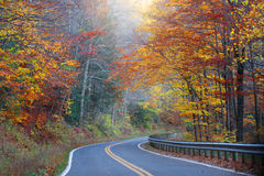 Misty autumn drive Stock Images