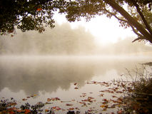 Misty Autumn Lake Stock Image