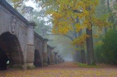 Misty autumn morning. In the Catherine park in Tsarskoye Selo Stock Photos
