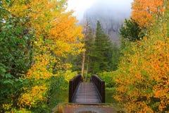 Misty autumn morning Stock Image