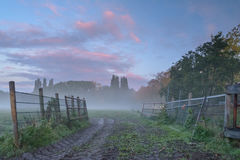 Misty Autumn Mornings. On the fields Stock Photo