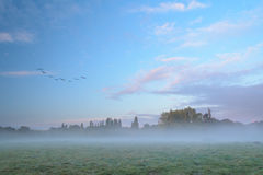 Misty Autumn Mornings. On the fields Royalty Free Stock Image