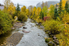 Misty Autumn Mountain Creek Royalty Free Stock Photo