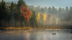 Misty Autumn-ochtend in Adirondacks stock foto's