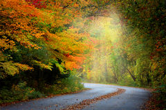 Misty autumn road Royalty Free Stock Photos