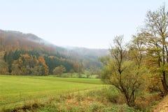 Misty autumn scenery Stock Photos