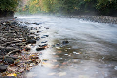 Misty Autumn Stream Stock Images