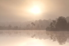 Misty autumn sunrise over forest lake Stock Photography