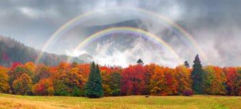 Misty autumn Transcarpathia royalty free stock images