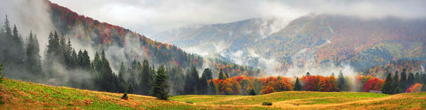 Misty autumn Transcarpathia Stock Image