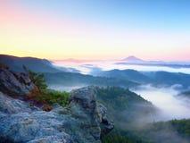 Misty awaking of beautiful fairy valley. Peaks of rocks above creamy fog stock photo