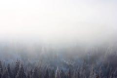 Misty background Stock Image
