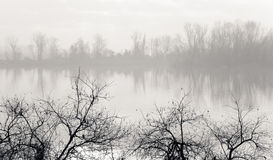Misty banks of a river. Fog and mist on a river with hazy view of trees in the distance and stark, bare winter tree branches in foreground Royalty Free Stock Photos
