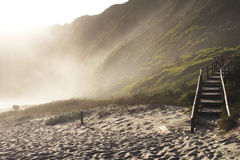 Misty beach. Wooden steps on beach with mist Royalty Free Stock Image