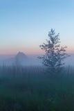 Misty Beautiful Nature Background Arkivbilder