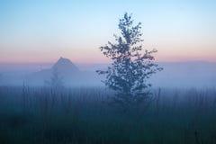 Misty Beautiful Nature Background Royaltyfri Bild