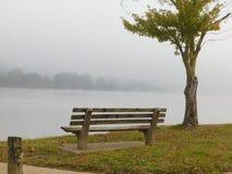 Misty Bench Imagens de Stock Royalty Free