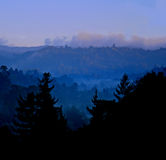 Misty Blue Mountains. Trees in silhouette against blue mountains in the mist royalty free stock images