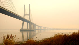 Misty Bridge. Portugal - Lisbon view to Tagus river with Vasco da Gama bridge and some misty fog Stock Photography