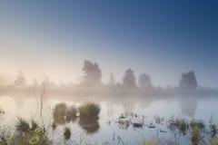 Misty calm sunrise over swamp Stock Photography