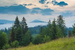 Misty carpathian mountain valley Stock Image