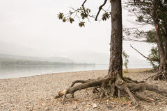 Misty Coniston Water Stock Photos