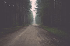 Misty country road in the early morning. Vintage. Stock Photography