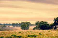 Misty countryside landscape Royalty Free Stock Images