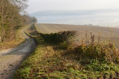 Misty countryside near Arundel. England. Misty South Downs countryside near Arundel in West Sussex. England. With dirt track Royalty Free Stock Images