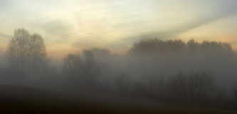 Misty dawn in the autumn fields Stock Images