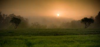 Misty dawn stock photos