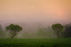 Misty dawn Royalty Free Stock Photography