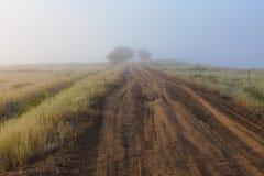 Misty dawn early morning nature grassland landscape Stock Photos