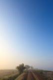 Misty dawn early morning nature grassland landscape Stock Image