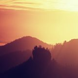 Misty dawn from hill over beautiful Valley and the forest Royalty Free Stock Photo
