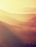 Misty dawn from hill over beautiful Valley and the forest Stock Photography