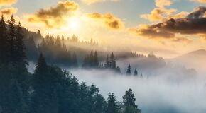 Misty Dawn In The Mountains. Beautiful Landscape Royalty Free Stock Photo