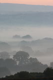 Misty Dawn Layers Royalty Free Stock Photos