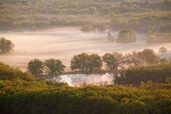 Misty dawn. On the meadows and groves Stock Photography