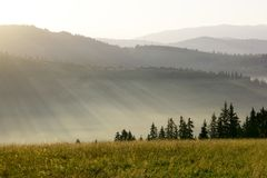 Misty dawn in the mountains in summer. Royalty Free Stock Images