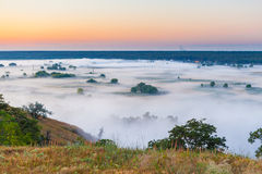 Misty dawn over Valley and the forest Royalty Free Stock Photography