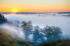 Misty dawn over Valley and the forest Royalty Free Stock Images